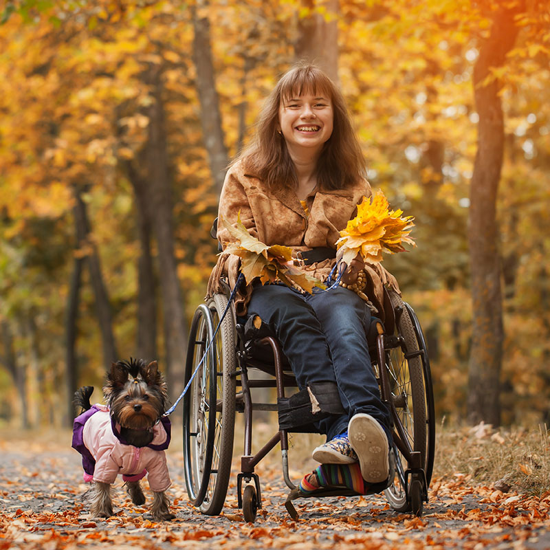 wheelchair woman and dog